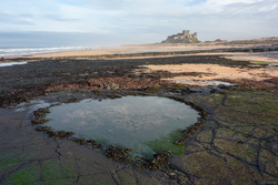 The Beating Heart Of Bamburgh
